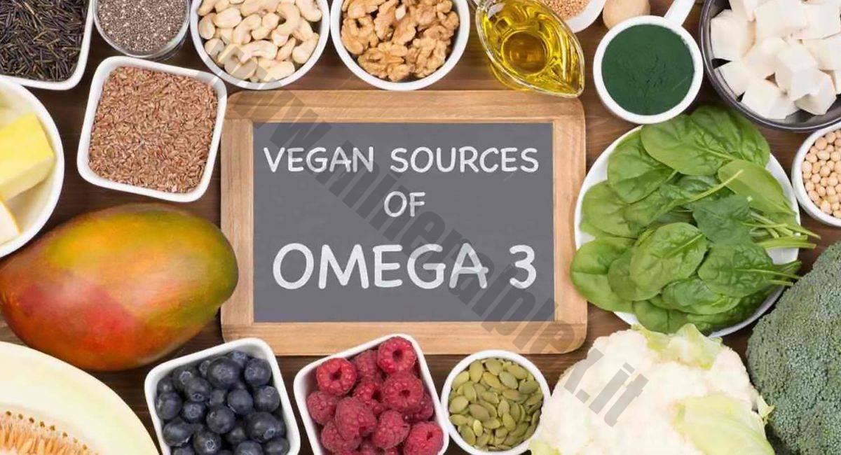 omega 3 veg def