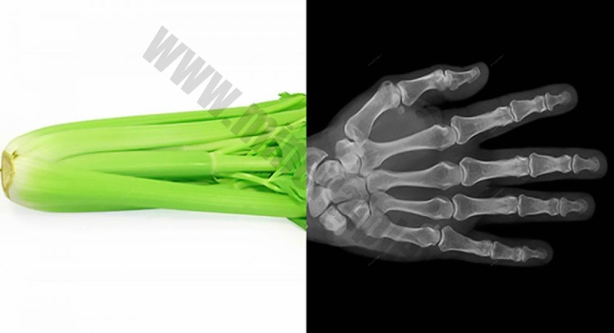 sedano-ossa def